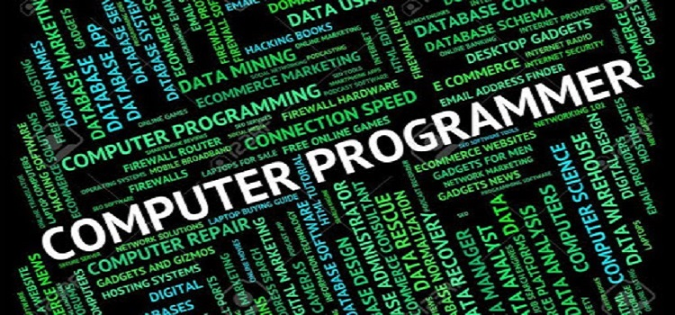 A Beginner's Guide to Programming: Everything You Need to Know